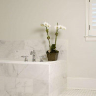 8X18-TUB-WITH-ORCHID-2